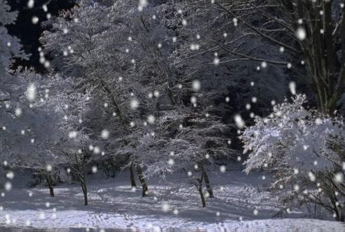 描写冬天下雪的句子