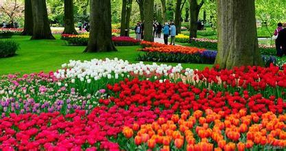 描写春天景象的句子