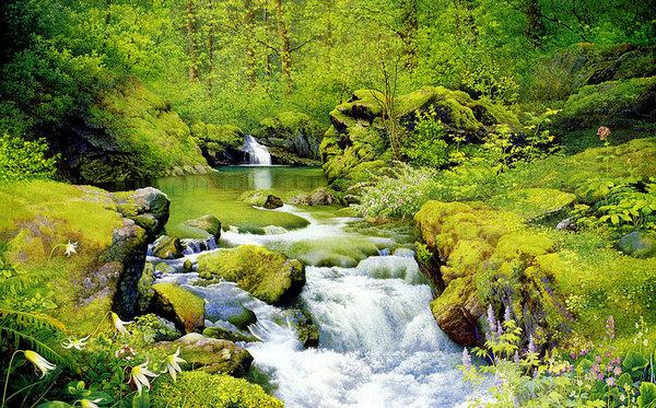 4、小溪的春天,富有诗情画意。(www.xuejuzi.cn)春光明媚的天气,溪旁的鲜花五颜六色,几柱婀娜多姿的柳树姑娘在梳理自己的长发,有的头发在水面上玩耍;水清澈见底,鹅卵石一块块躺着睡觉;几十颗白杨树巍然屹立,想一个个威武的将军;蝴蝶在花丛中翩翩起舞,蜜蜂在花丛中采蜜…… 5、春天里,小溪在阳光的照耀下,波光粼粼,仿佛绸带上镶嵌了亮晶晶的宝石。溪水叮叮咚咚唱着欢快的歌儿,跑向远方,热闹极了! 6、小溪就像是一条玉带,飘荡在青山之间,座座山上的树是绿的,到了开花的季节,各