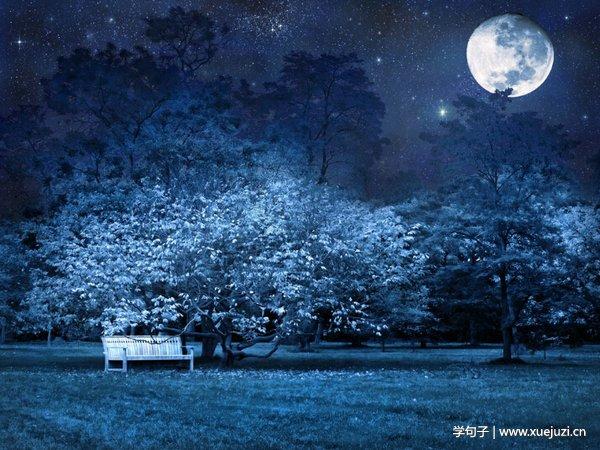 描写夜晚的句子带图片