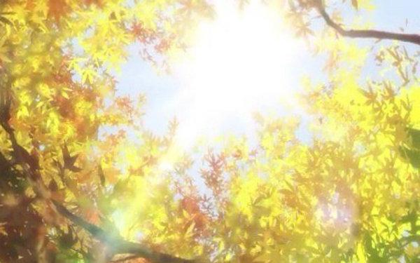 有关于阳光的句子带图片