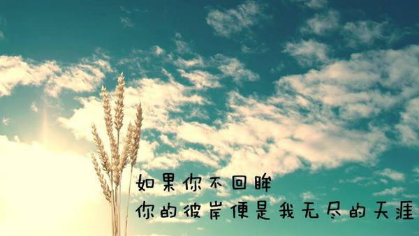 表示心情不好的唯美句子带图片