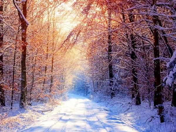 描写冬天景色的句子,描写冬天景