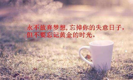 奋斗励志的句子,努力奋斗励志的