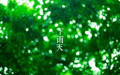 下雨天的句子及图片