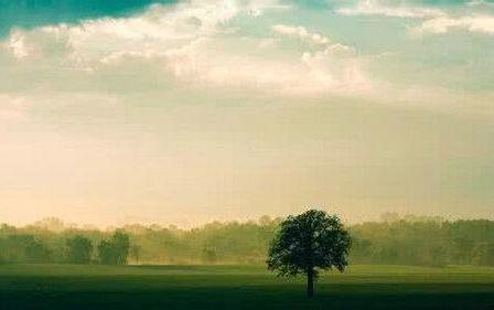 关于风景抒情的句子带图片