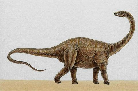 恐龙油泥手工制作
