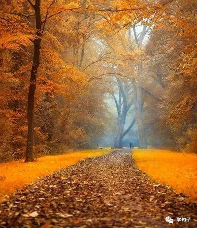 比喻秋天的句子:秋天就像一位身