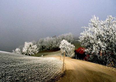 描写冬天的句子景色图片