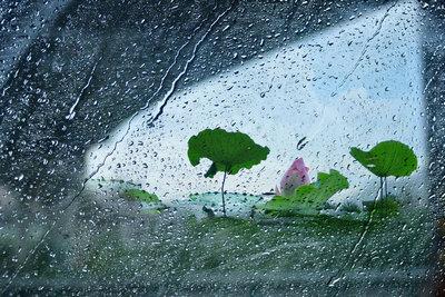 下雨忧伤的句子说说心情:望着天