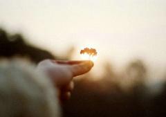 阳光励志的句子简短:苦想没盼头
