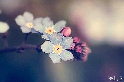 含蓄表达思念的句子,思念的句子说说心情