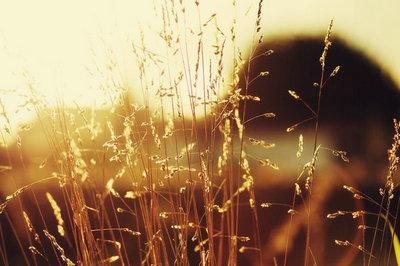 一路走好天堂里的句子、说说及天堂安息图片