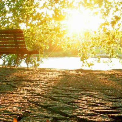 阳光岁月唯美句子