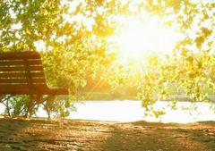 阳光岁月唯美句子,阳光岁月静好