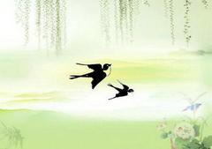 燕子南飞的句子及图片