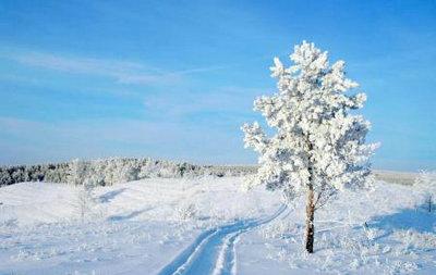 描绘冬天的句子