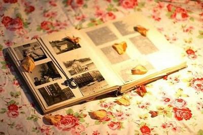 表达回忆的句子