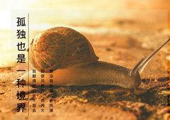 蜗牛精神的励志句子励志语录