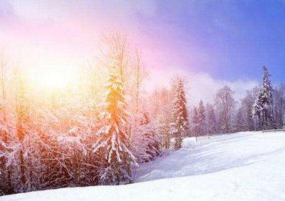 描写冬天的优美的句子