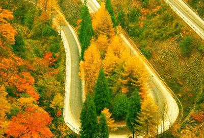 描写秋天美景的句子