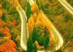 描写秋天美景的句子:小桥流水,