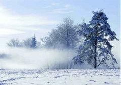 描写冬天好的句子:闻,冬天的气
