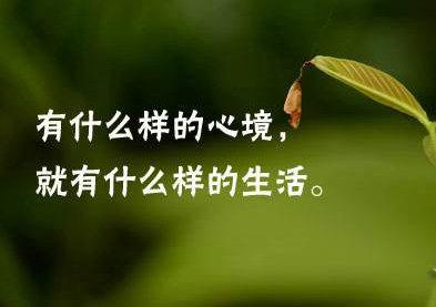 失去生活的意义的句子,生活没意义的句子