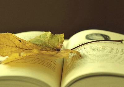 关于描写回忆的句子大全