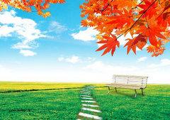 关于秋天的句子大全:秋雨总是那