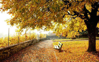 关于秋天的句子摘抄