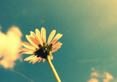 美好的一天说说正能量,美好的一天早安的说说