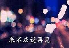 来不及告别(说再见)的句子【精