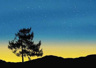 静谧的夜晚唯美句子伤感句子