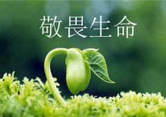 敬畏生命的句子【精选8句】